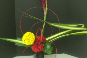 Red and Yellow Arrangement